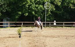 Journée Découverte Equitation Sport adapté