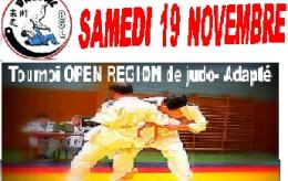 tournoi de Judo open région (78)