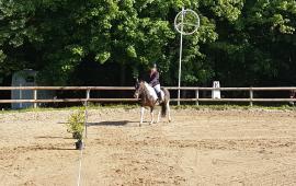 Journée Découverte de l'Equitation (78)